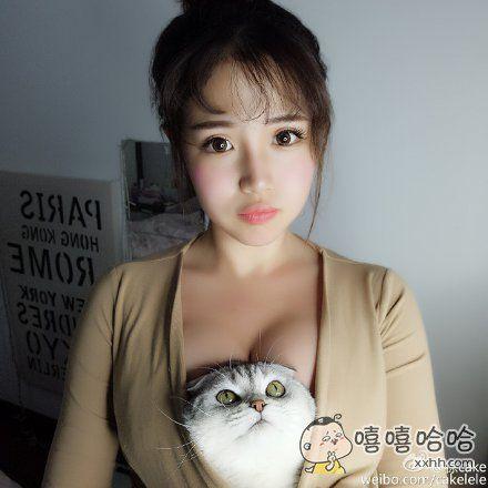 哇,胸口藏猫
