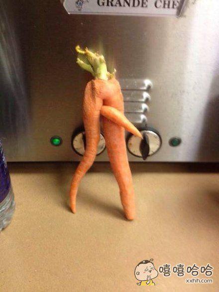 没想到你是这样的胡萝卜
