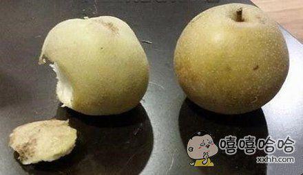 哪个逗比把土豆放我梨的旁边了