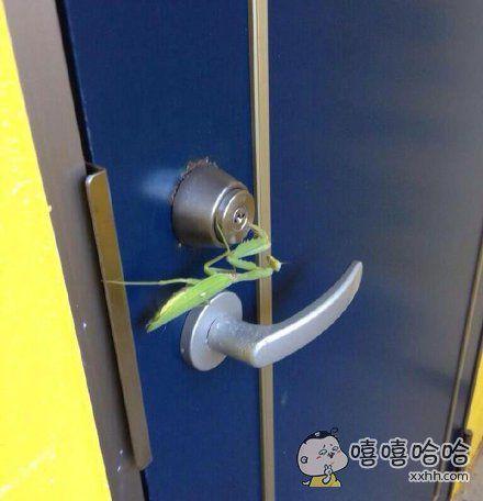 一些不法分子在光天化日下溜门撬锁,气焰十分猖獗。
