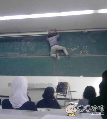 老师,你是猴子请来的逗逼吗?