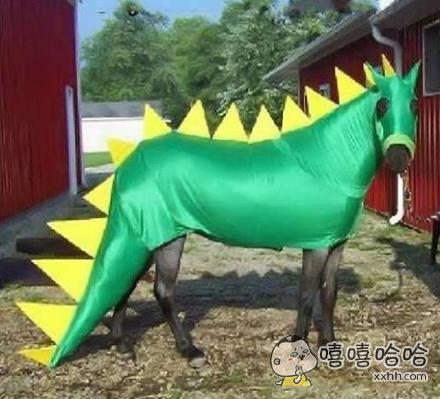 恐龙马?还是鳄鱼马?
