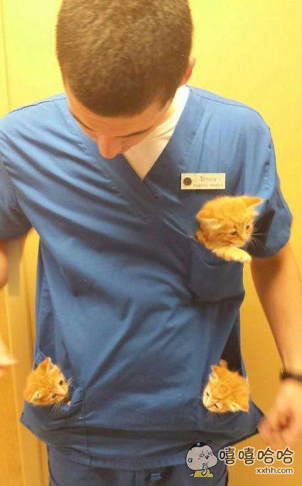 兽医小哥的日常