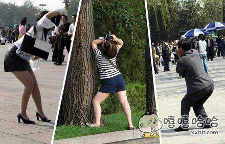 在景区拍照的旅客竟是如此神似