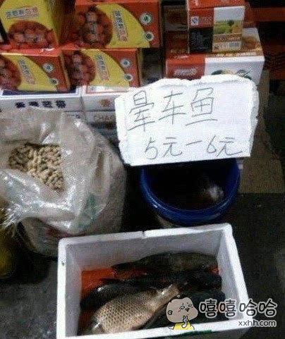 请问,这鱼晕车会吐在我车上吗?