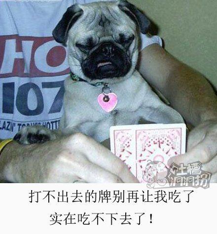 什么破牌!