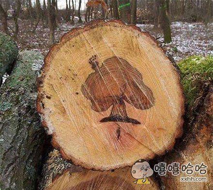 大自然的鬼斧神工