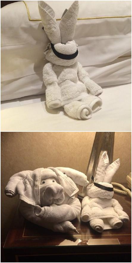 十一区一哥们住宾馆,往小费上面放了个自叠的纸鹤,结果晚上回来发现清扫员用毛巾叠了个兔子...小哥不服输,又叠了个纸手里剑,清扫工又回了个大象...根本玩不过