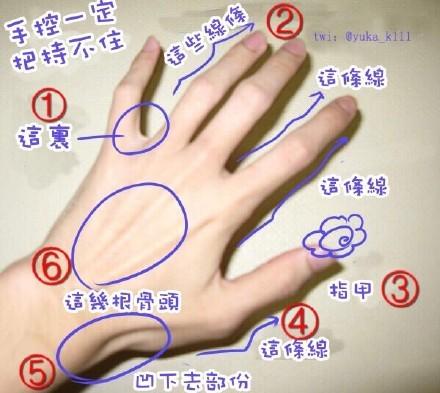 想问是手控的大家,觉得手上最性感的部位是哪里?