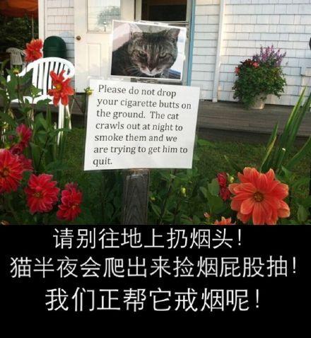 万般无奈的主人在花园里竖了块牌子......主人也是心情复杂