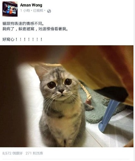 台湾网友生病了一直躲在被窝,然後发现他家的喵星人一直在偷看他,还一脸担心的样子。。。有这样的喵主子一生无憾了。。
