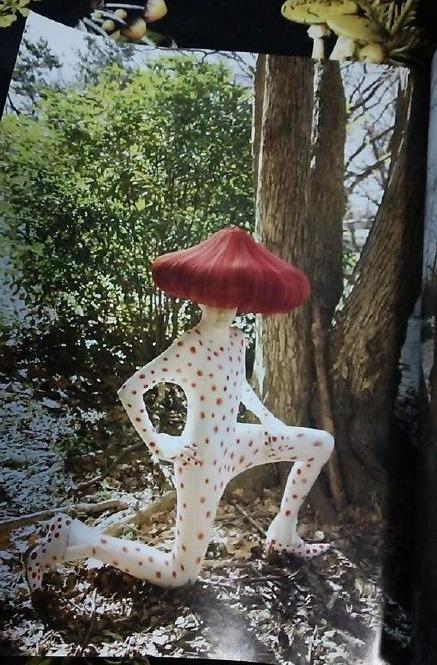 一网友说在餐厅等人于是随手拿起一本美容杂志翻翻,结果看到这个「人类蘑菇特辑」……原谅我不曾懂过时尚(´_ゝ`)