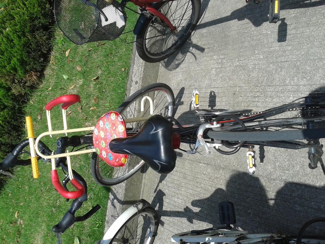 谁说自行车没后座就不能载人了,上来,我你一程。