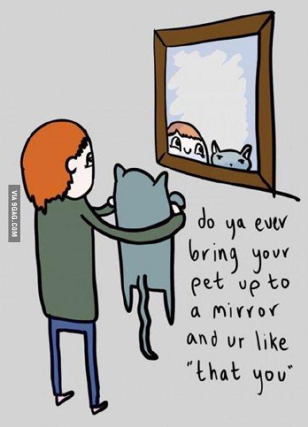 """你有没有把自己的宠物举到镜子前,对它说过,""""这就是你""""?"""