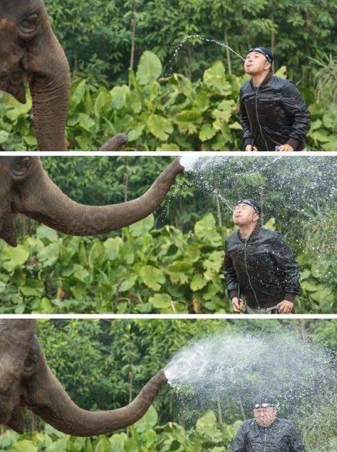 蠢货!你敢朝我喷水?