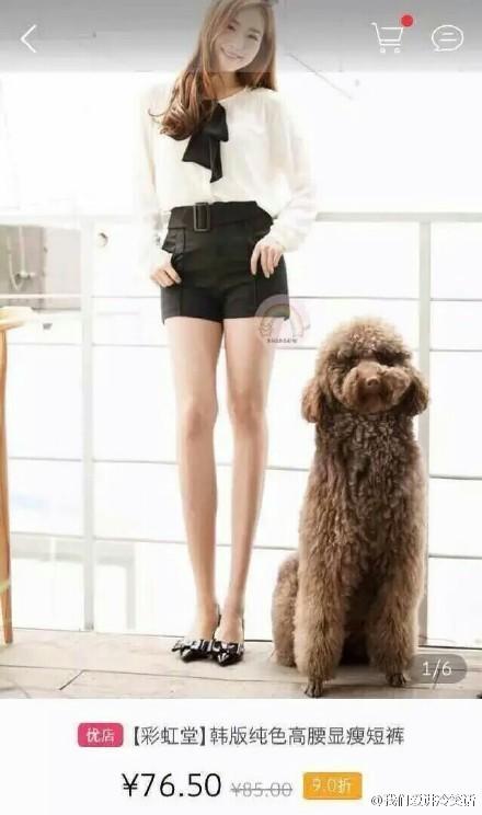日了狗了,拉长腿的时候能关心那只泰迪吗,都拉成草泥马了(via-Stupid土拨鼠)