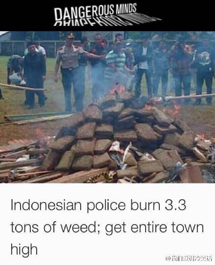 新闻:印尼警方在销毁3.3吨大麻时,因为风向导致大麻味扩散,结果整个村子的人都嗨了...我国网友表示:林则徐虎门销烟时都是扔熟石灰里烧,谁用火烧呀?