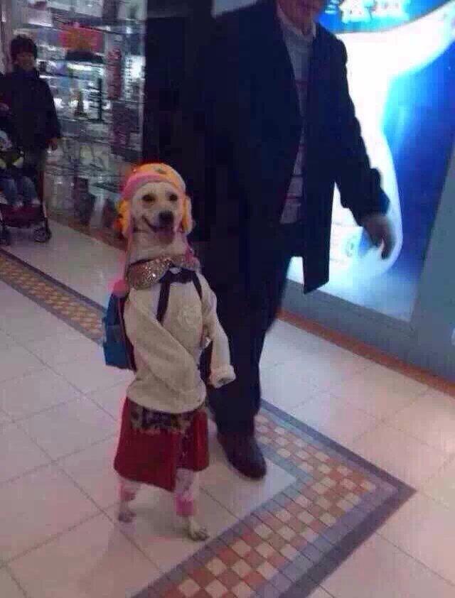 刚在在商场里,我以为是爷爷带着孙女出来玩儿,一看正面我就醉了。太他妈任性了