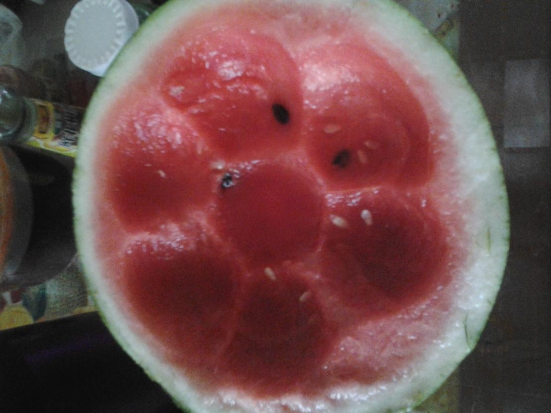 我……吃西瓜…被老爹抢了……没错中间的那块!!!我一定是被捡来的!T^T我顿时觉得世界都黑暗了……QAQ  ——我吃了一圈给老爹看~像不像蜂窝?于是就这样了!QAQ
