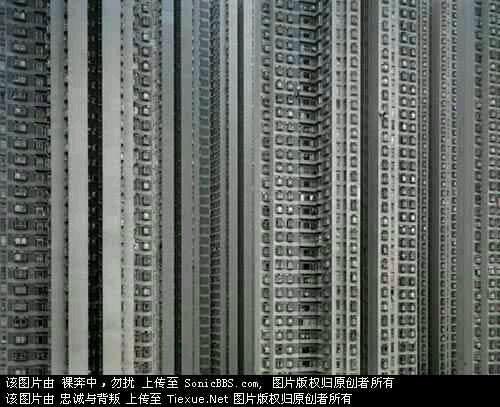 香港人都住在蛐蛐过笼儿里头!