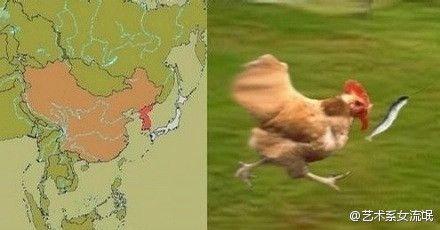 真像,日本只是一条猥琐的鱼