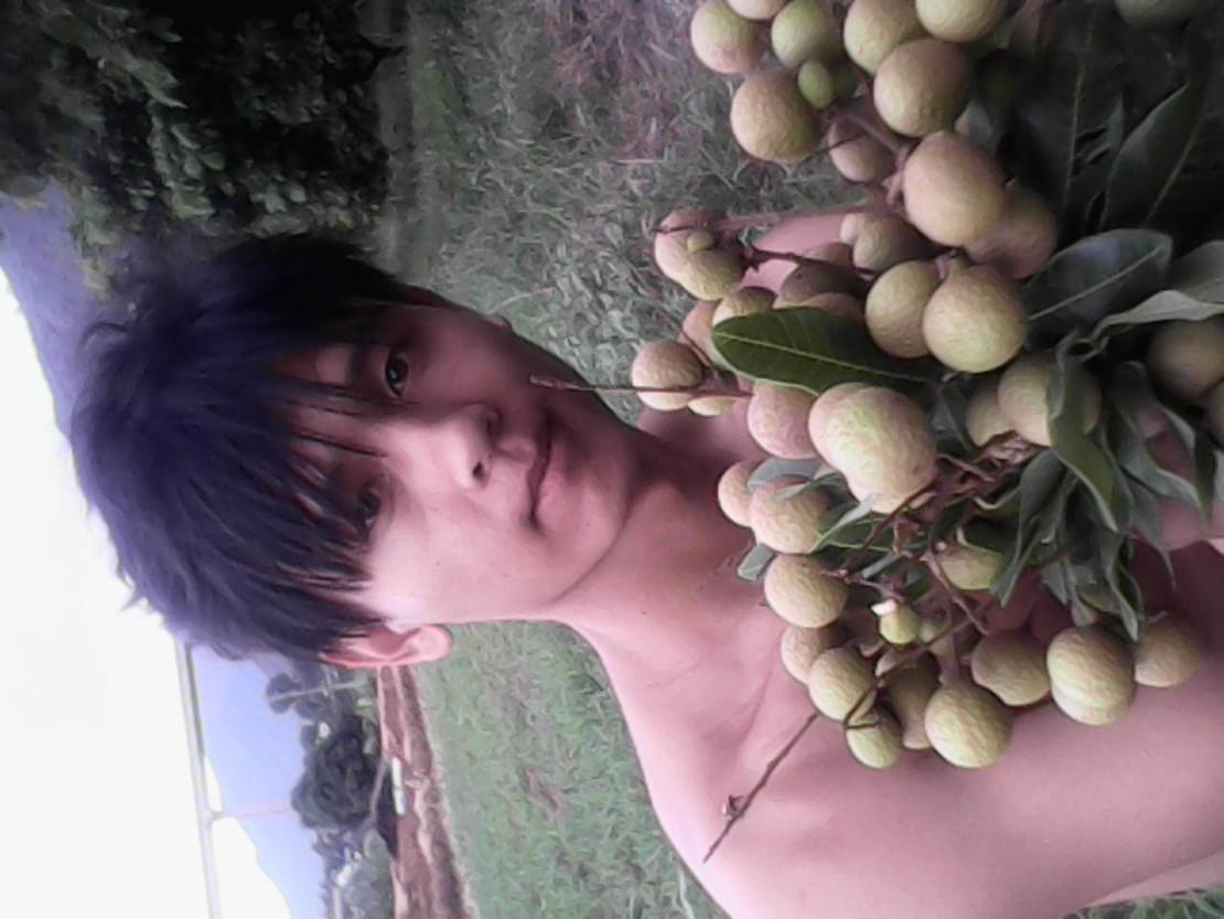 小弟潞江坝的,这里盛产水果和帅锅,龙眼居然熟这么早,冷友们要来一发么?