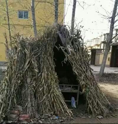 刚建的新房,求女友。
