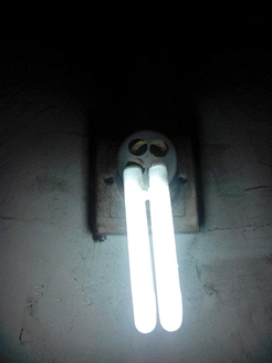 一个坚强的灯泡,它让我相信了人与人之间的信任。