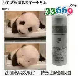 看了这张图后我才明白,,,,熊猫的眼睛原来这么小!!