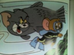其实还有只样子抓鱼的猫咝!