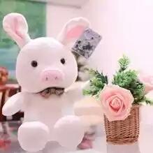 你猜我是猪,还是兔子呢,其实,我是一只猪兔子,,大笑~~~~