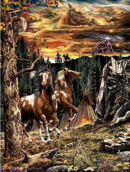 我才发现12匹马你呢?