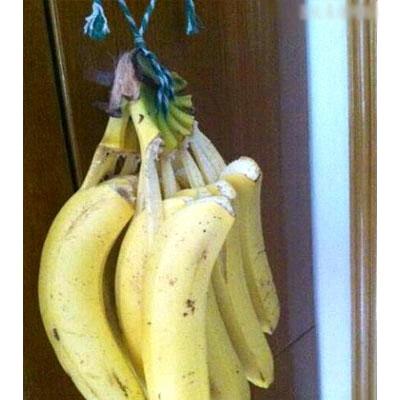 @( ̄- ̄)@我好蠢,同事说香蕉挂起来坏的慢我就信了。