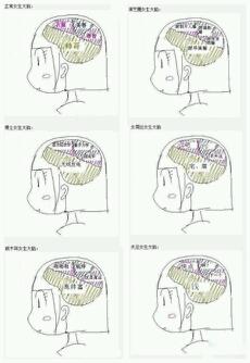 各种女人大脑思想!!!!!!!