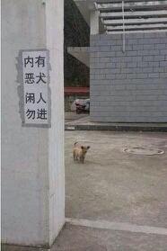 当时我站在门口,拔腿就跑!