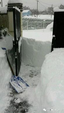 全力扫开积雪,终于抵达院门后,却发现之前的努力都白费了……