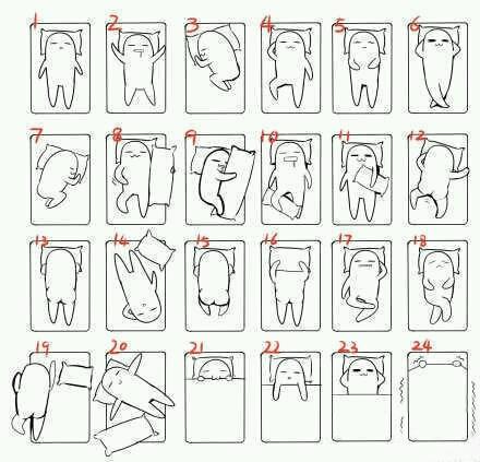 你是哪一种睡姿呢 ?