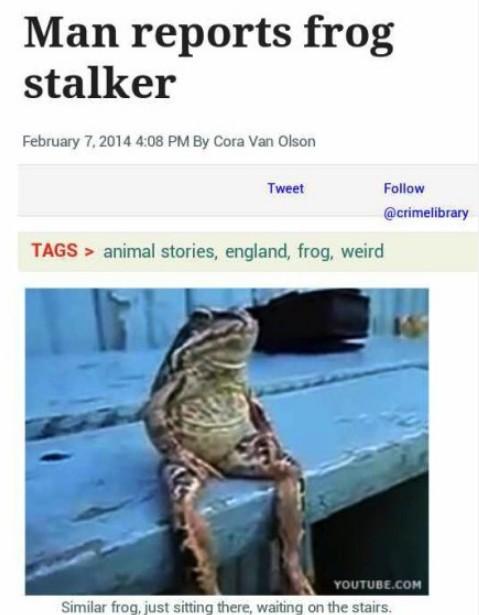 【男子不堪被青蛙骚扰报警:它每天都在家门口等我...】英国一男子日前报警称,他遭一只青蛙跟踪。他说,那青蛙总在他家门口的楼梯下坐着,虽然不叫唤,但令他感到恐慌。接警中心发言人无奈称,我们已建议这位男子,等青蛙自己跳走就好,可他却坚称青蛙是在等他,想骚扰他...