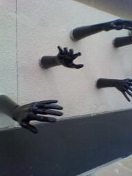哇,这是哪来的手,哈哈哈