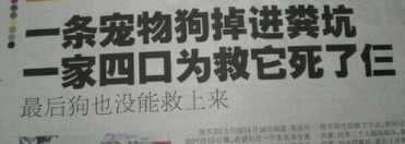 啥也不说了 副标题太伤人〜!