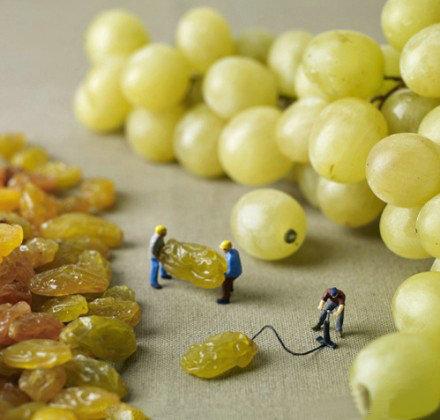 葡萄是怎么来的~