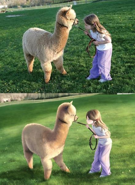 一位摄影师把拍的一张女孩和羊驼的照片变成了动漫的情景 结果萌哭了