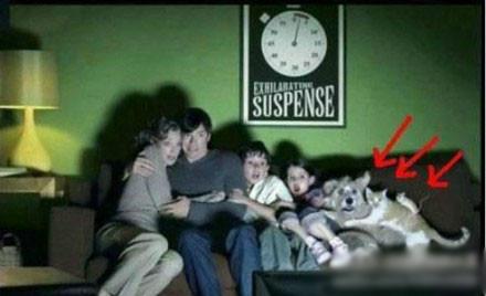 这一大家子看恐怖片确实被吓得不轻啊!