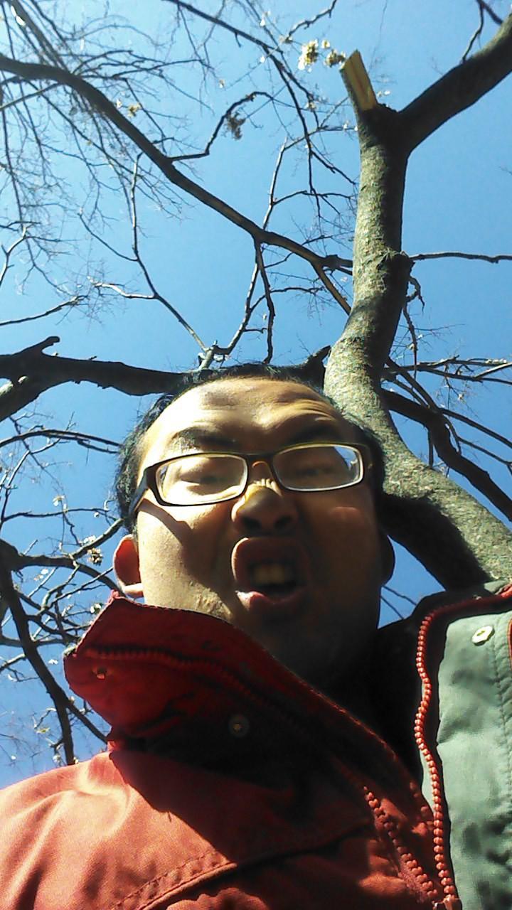 这是我们农场的林业技术员,刚拍完这个照片,就从树上掉下来了,做啥工作也不容易啊!掉下来瞬间....