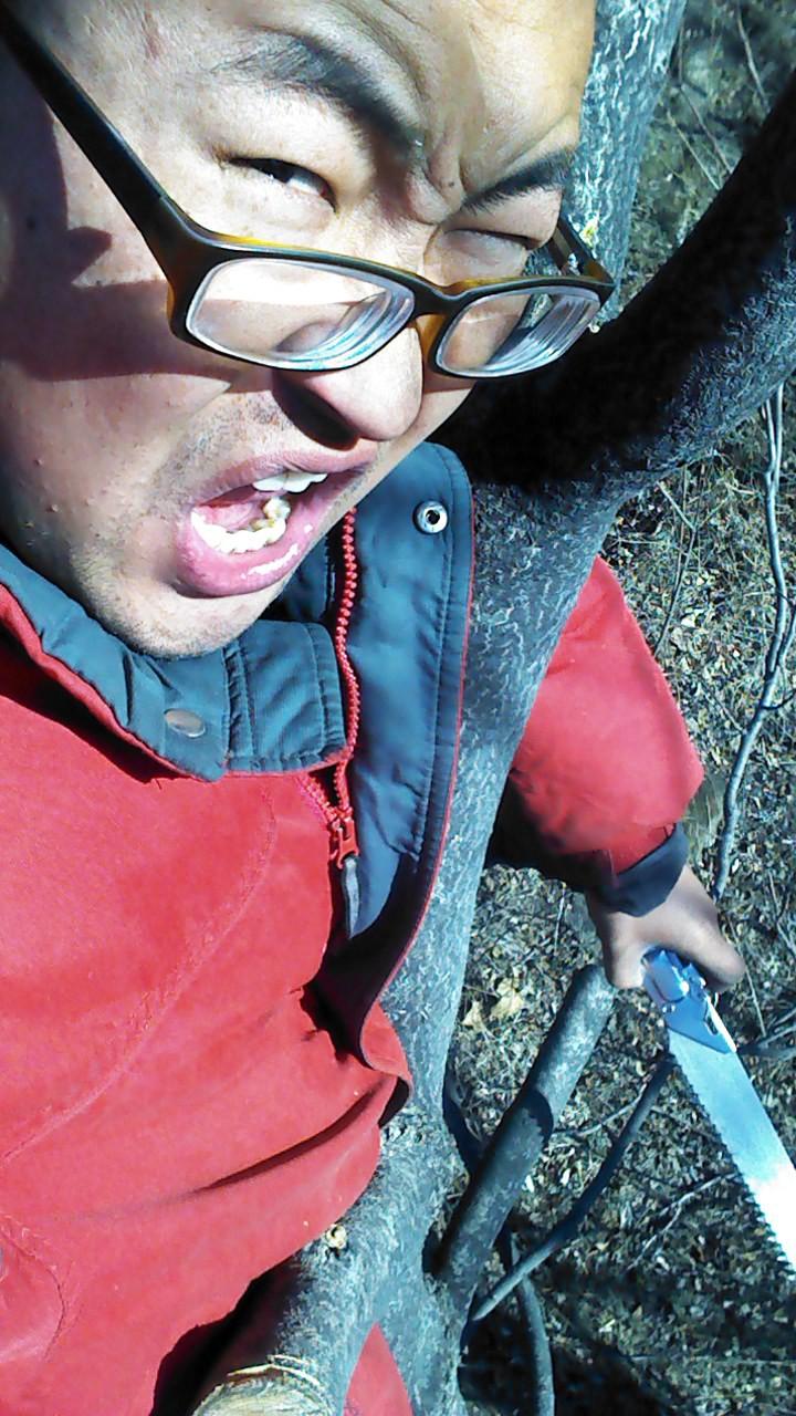 这是我们农场的林业技术员,刚拍完这个照片,就从树上掉下来了,做啥工作也不容易啊!