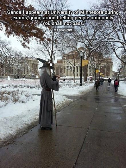 某个深井冰穿着甘道夫的衣服,在明尼苏达大学校园里,对着即将步入考场的人们低语:you shall not pass 。我快笑瘫了!!!
