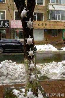 雪人神马的都落后了 看大神新作
