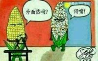 肿莫样?玉米变成爆米花。