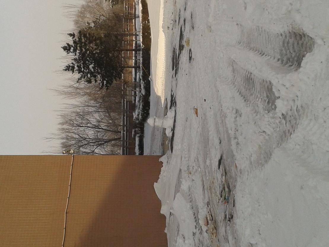 俄就是想知道介是谁堆的雪人…= =!