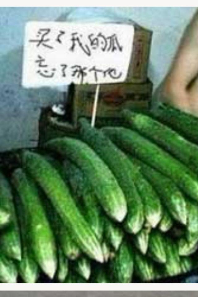 黄瓜了,又大又爽的黄瓜!不爽不要钱。